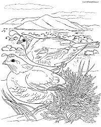 Birds Coloring Pages Select From 27115 Printable Of Cartoons Animals Nature Bible And Many More