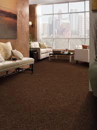 brown carpet living room ideas modern house