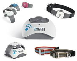Tagg – The Pet Tracker™ is a new wireless pet tracking device that uses GPS