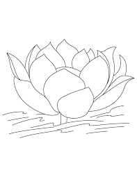 Free Lotus Coloring Pages