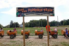 Pumpkin Patch Sf by Corn Maze Capitol Momma