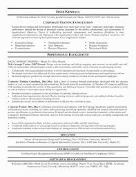 Gallery Of Sample Resumes Luxury Technology Executive Resume Samples Legalsocialmobilitypartnership
