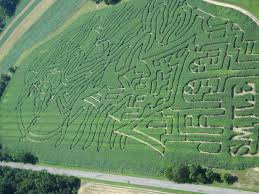 Delzers Pumpkin Farm by 4 Delzers Pumpkin Farm Halloween Corn Maze Map Pictures To