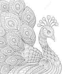 Peacock Adult Antistress Coloring Page Black And White Hand Drawn Doodle For Book