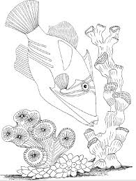 Underwater World Coloring Pages