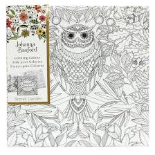Johanna Basford Canvas 12x12 Secret Garden Owl