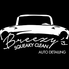 100 Cars Trucks And More Howell Mi Breezys Squeaky Clean Auto Detailing LLC 1722 Photos 48