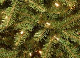65 Ft Christmas Tree by Christmas Tree With Clear Lights Fia Uimp Com