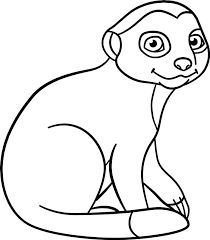 Meerkat Animal Coloring Pages Little Cute Baby Sits And Smiles Stock Vector