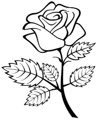 Printable Rose Coloring Pages Free Roses For