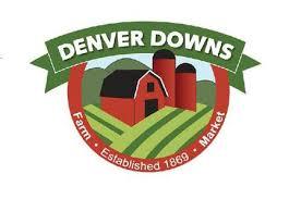 Pumpkin Patch Denver by Find Corn Mazes In Anderson South Carolina Denver Downs Farm
