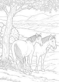 Realistic Horse Coloring Pages For Free