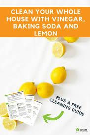 Fresh Drop Bathroom Odor Preventor Ingredients by 54 Best Cleaners Images On Pinterest Diy Cleaners Household