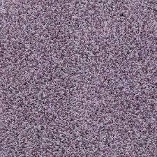 Carpets Plus Color Tile by Platinum Plus Twist Carpet Samples Carpet U0026 Carpet Tile