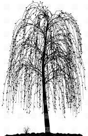 Weeping Willow Tree Original