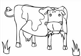Adult Coloring Sheets To Print Page For Adults Exciting Pages Of Cow