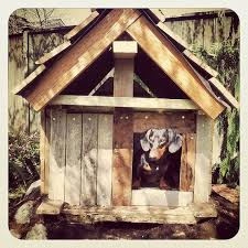 The 25 Best Rustic Dog Houses Ideas On Pinterest