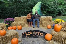 Pumpkin Picking Nj Near Staten Island by Halloween Activities And Events For Kids In Nyc