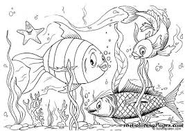 Coloring Page Fabulous Pages Fish Book
