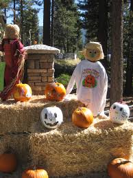 Pumpkin Patch Daycare Fees by Pumpkin Patch Incline Village Nursery