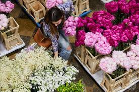 99 Bungalow 5 Nyc In Bloom Part I A Guide To The NYC Flower Market Homepolish