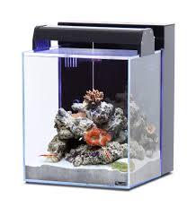 aquarium nano eau de mer aquarium aquatlantis nano marin 40 l tout équipé coloris noir ou