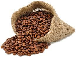 Coffee Plant Clipart Bean Bag 2