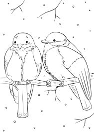 Click To See Printable Version Of Winter Birds Coloring Page