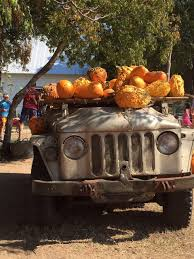 Pumpkin Patch Marble Falls by Horseshoe Bay U0026 Marble Falls Insider Tips On Great Things To Do