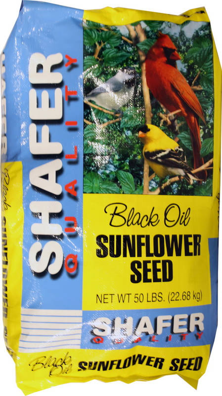 Shafer Black Oil Sunflower Seed Bird Feeds - 50lb