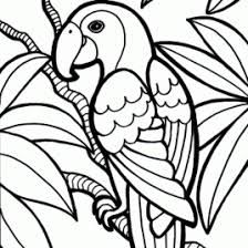 Free Bird Coloring Pages Printable Songbirds