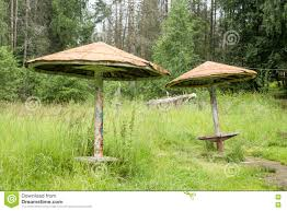 100 Wooden Parasols Old Among The Tall Grass Stock Photo