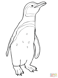 Free Penguin Coloring Pages For Preschoolers Click Christmas Printable Adults Full Size