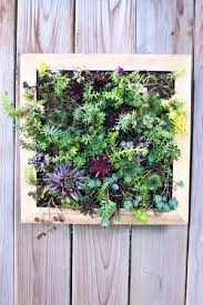 TOP 10 DIY Outdoor Succulent Garden Ideas - Top Inspired Small Backyard Landscaping Ideas On A Budget Diy How To Make Low Home Design Backyards Wondrous 137 Patio Pictures Best 25 Backyard Ideas On Pinterest Makeover To Diy Increase Outdoor Value Garden The Ipirations Image Of Cheap Modern Awesome Wonderful 54 Decor Tips Diy Indoor Herbs