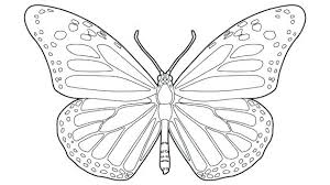 Wonderful Monarch Coloring Page Butterfly Line Drawing Pages Print