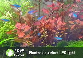 best planted aquarium led lights for growing plants reviews guides