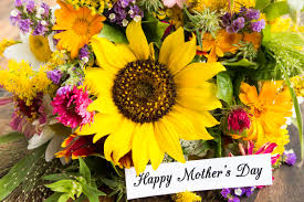 25+ Mother's Day Freebies And Deals On Dining, Cards ... Sponsors Discount Codes Fantasy Footballers Podcast Bratwurst Coupons Codes For Crewe Hall Adams Driveshaft Coupon Code Amazon Computer Parts Cosmetic Freebies Uk Advair Without Insurance Iceland Discount Grocery Store Sccrcinfo Page 229 Uga Capes Promo Ftd 10 Off November 2019 Factory Direct Flooring Valid Best Orbitz Bestcontacts Com Flower Subscription Services And Boxes Urban Tastebud Dkoldies Get Progressive Tips Define Remittance Uckele