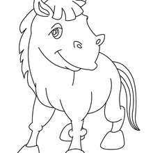Donkey Kawaii Coloring Page