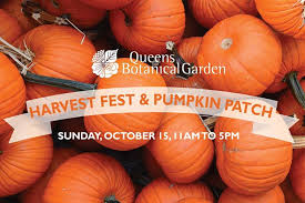 Pumpkin Patch Denver Botanic Gardens by Fest U0026 Pumpkin Patch Queens Botanical Garden Flushing 15 October