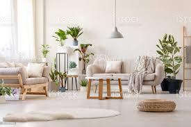 hocker neben teppich innen helles wohnzimmer mit pflanzen und beige echtes foto stockfoto und mehr bilder beige