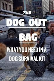 Best 25+ Survival Bags Ideas On Pinterest | Bridal Survival Kits ... How To Make A Winter Emergency Kit For Your Car Extended Travel Bag Youtube Gear Gremlin Gg170 Tyre Repair Amazoncouk Vehicle Gear Bug Out Or Emergency Tactical Pinterest Thrive Roadside Assistance Auto First Aid Aoshima 12062 Working Vehicle Series No1 Chemical Fire Pumper Rcwelteu Gelnde Ii Truck Wdefender D90 Body Set Zk0001 Coido 10 Pc Self Help Combo Kits Homeshop18 101piece And Rv With 2018 Best Motorcycle Tool Rowdy Products Survival Overland Adventures
