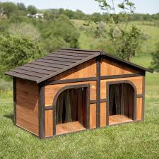 Do F1 Aussiedoodles Shed by Boomer U0026 George Darker Stain Duplex Dog House With Free Dog Doors