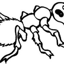 Best Photos Of Ant Coloring Page Cartoon Pages