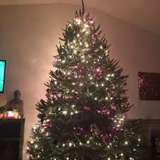 Frasier Christmas Tree Cutting by Anne Ellen Christmas Tree Farm 10 Photos U0026 10 Reviews