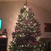 Christmas Tree Shop Brick Nj christmas tree shop 13 reviews christmas trees 100 trotters