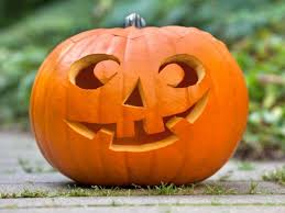 Pumpkin Patch Massachusetts by Oct 28 Pumpkins In The Park Nocturnal Tales And Treats