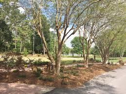 Paved Garden Areas Mobile Botanical Gardens