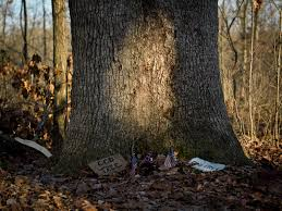 Walt Whitman The Wound Dresser by Nate Larson Photographic Media Civil War Witness Trees 2011