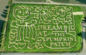 Pumpkin Patch Orlando Area by Portland Maize U0026 Pumpkin Patch Frightfind