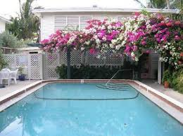 el patio motel a 2 star rated hotel in key west cleartrip